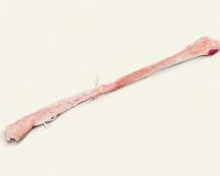 Striploin tendons