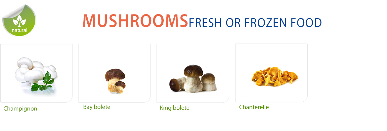 6-MUSHROOMS